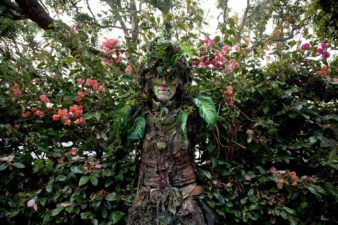 Treeman-074